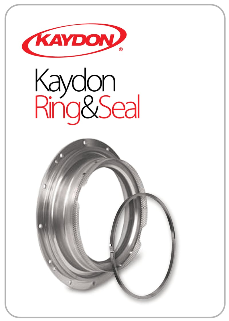 Kaydon ring and seal