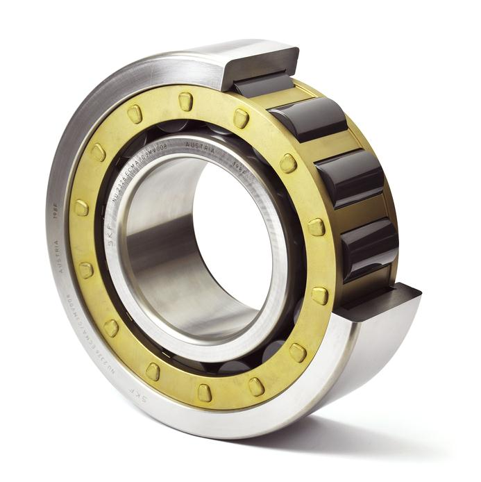 Bearings for sour gas application