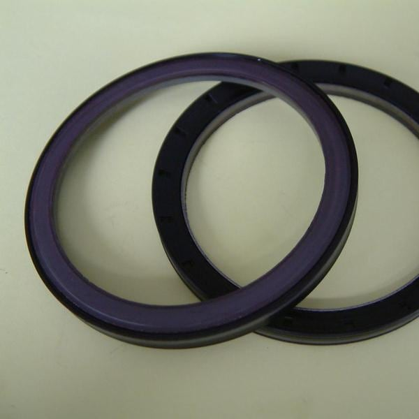 Magnetized bearing seal image